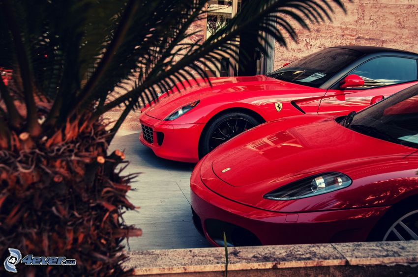 Ferrari, Palme
