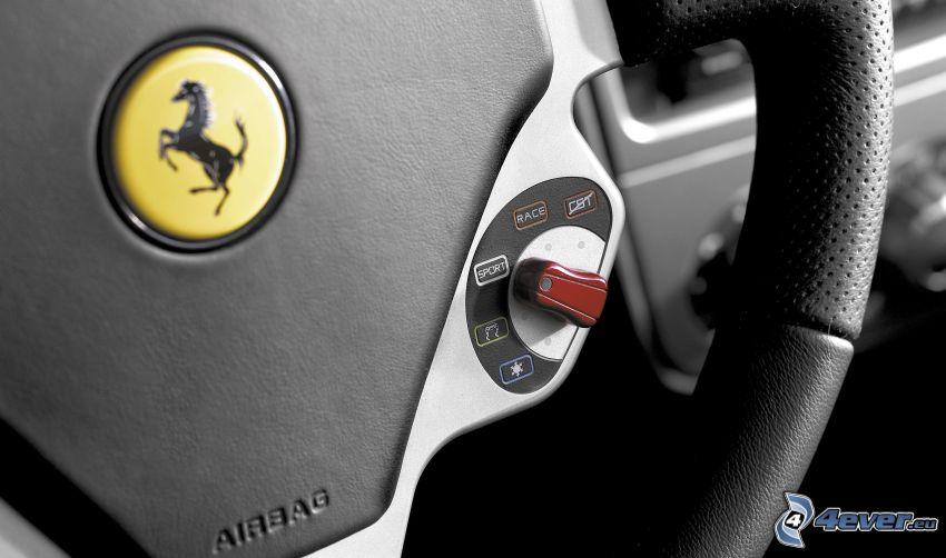 Ferrari F430, Lenkrad, logo