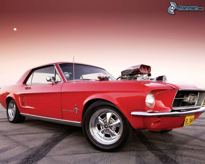 Ford Mustang, Oldtimer, Big Block