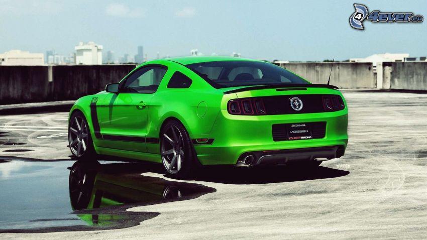 Ford Mustang, Pfütze