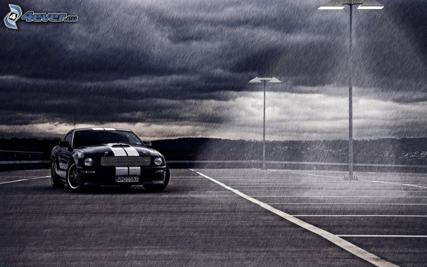 Ford Mustang, Regen, Lampen, Nacht, schwarzweiß