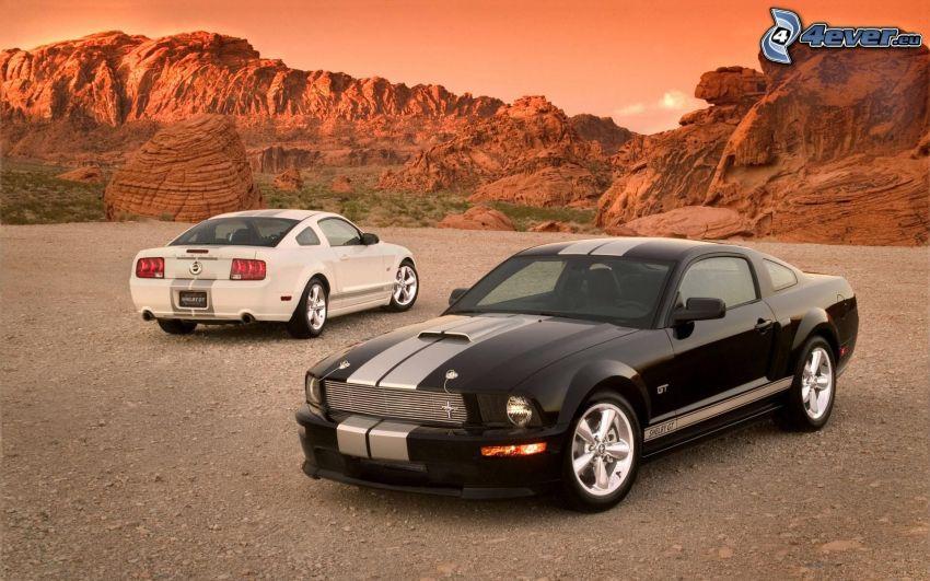 Ford Mustang Shelby GT, Wüste, Felsen