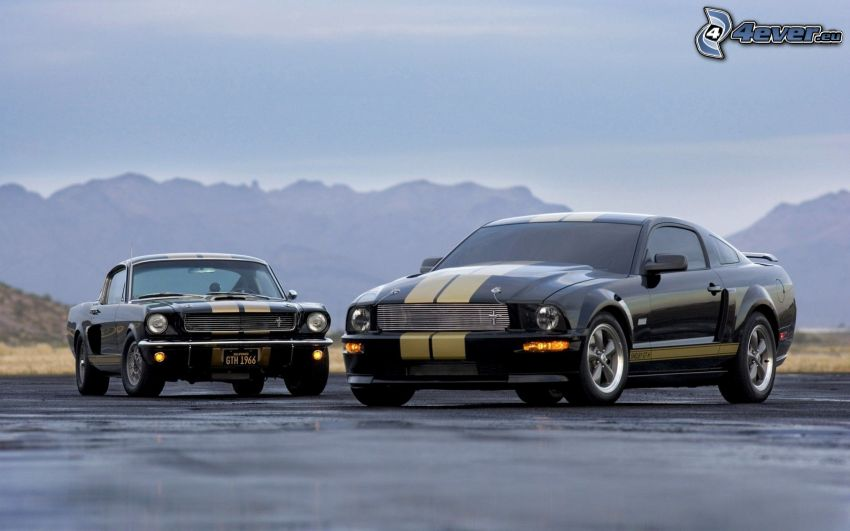 Ford Mustang Shelby GT500, Oldtimer