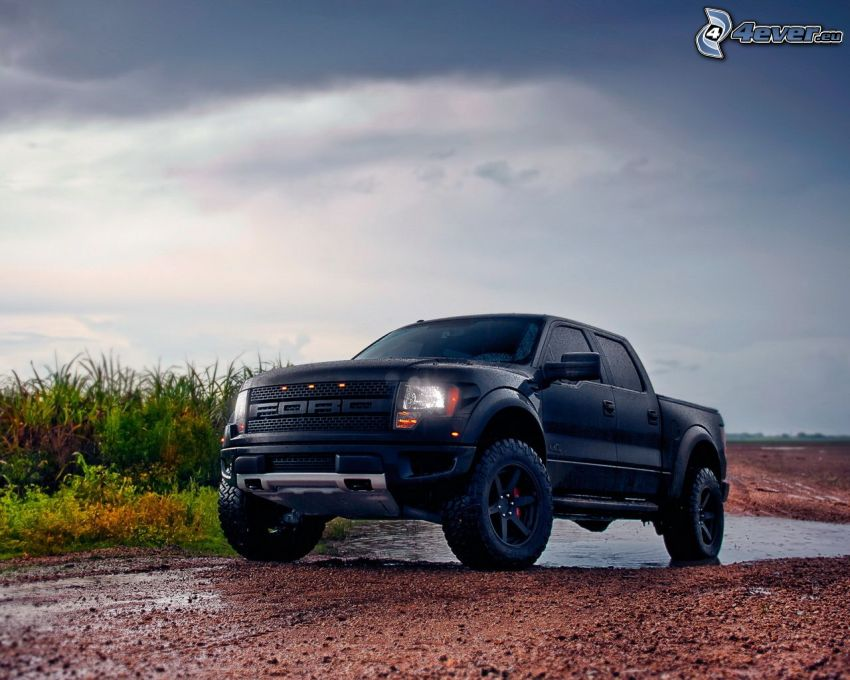 Ford Raptor, pickup truck
