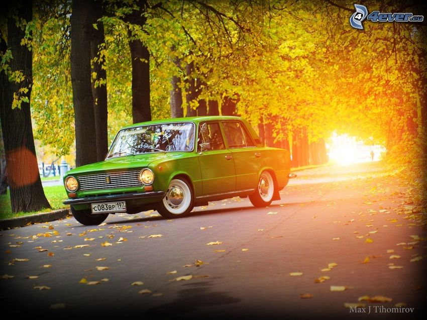 Lada, Straße, Baumallee, Herbstliche Bäume, Licht