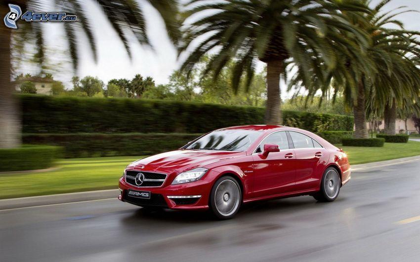 Mercedes CLS 63 AMG, Palmen, Geschwindigkeit