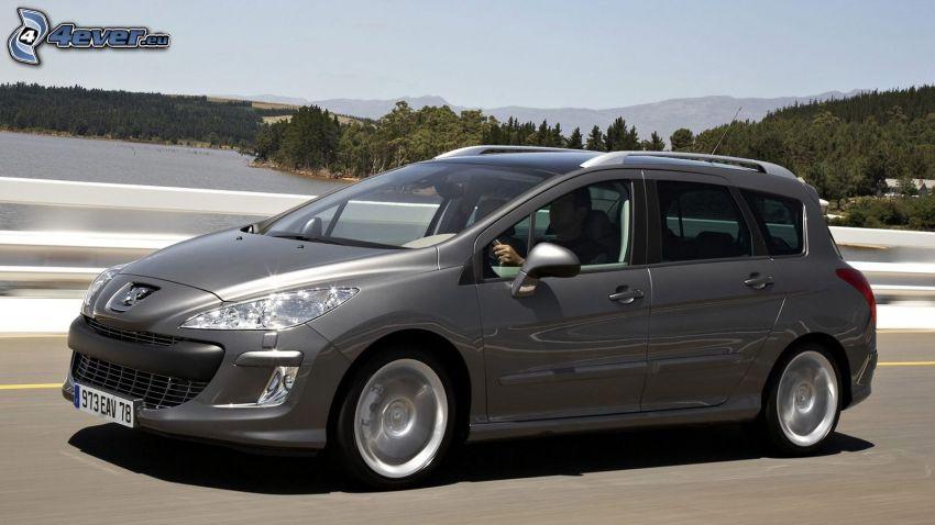 Peugeot 308 SW, See, Wald