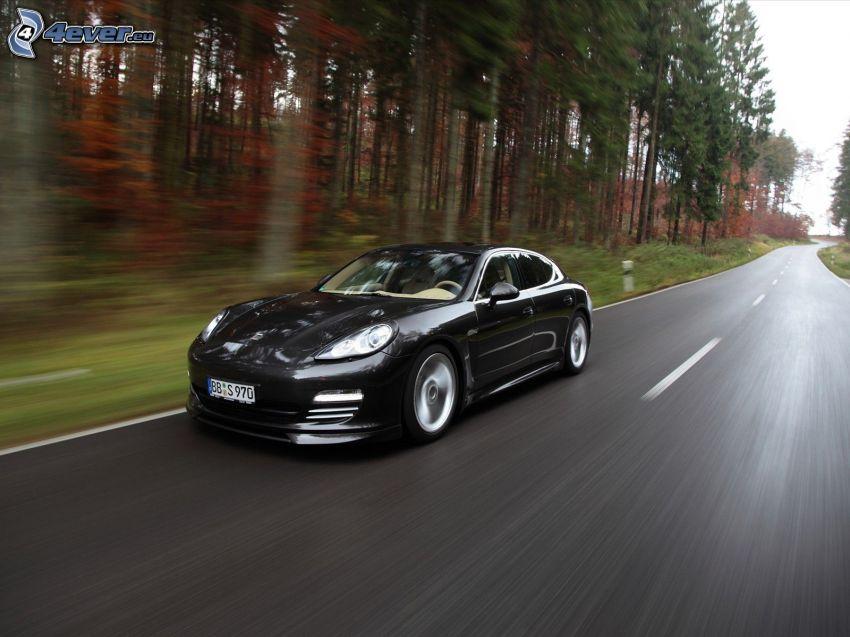 Porsche Panamera, Geschwindigkeit, Pfad durch den Wald