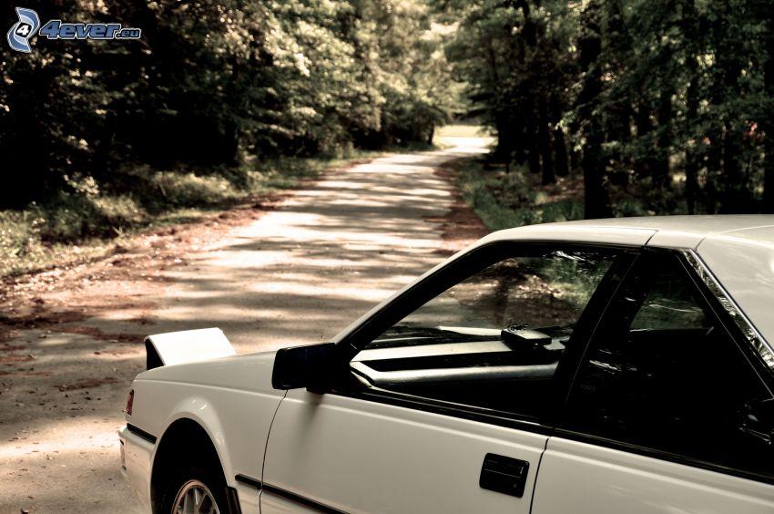 Toyota AE86, Pfad durch den Wald