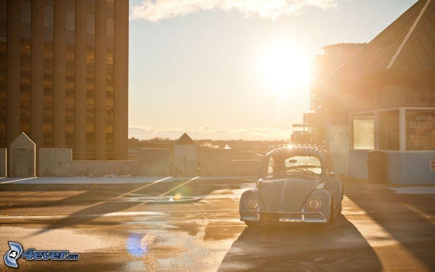 Volkswagen Beetle, Oldtimer, Gebäude, Sonnenuntergang in der Stadt