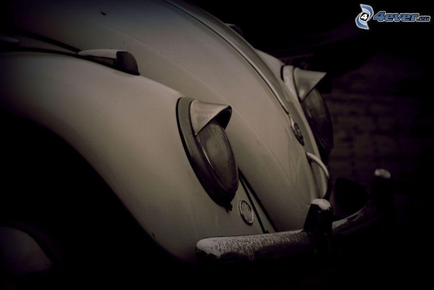 Volkswagen Beetle, Oldtimer, Reflektor, Vorderteil