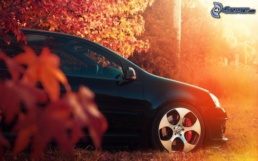 Volkswagen Golf, herbstlicher roter Wald