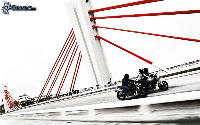Ducati Monster 1100, Brücke