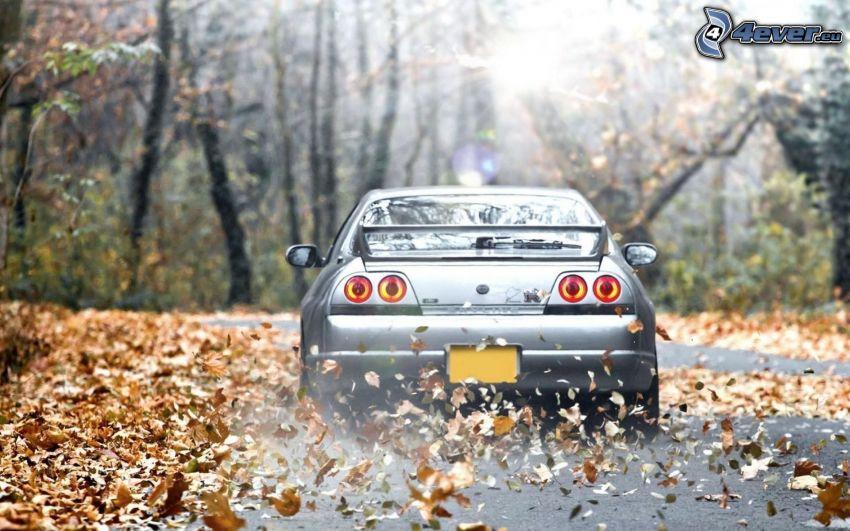 Nissan Skyline, trockene Blätter