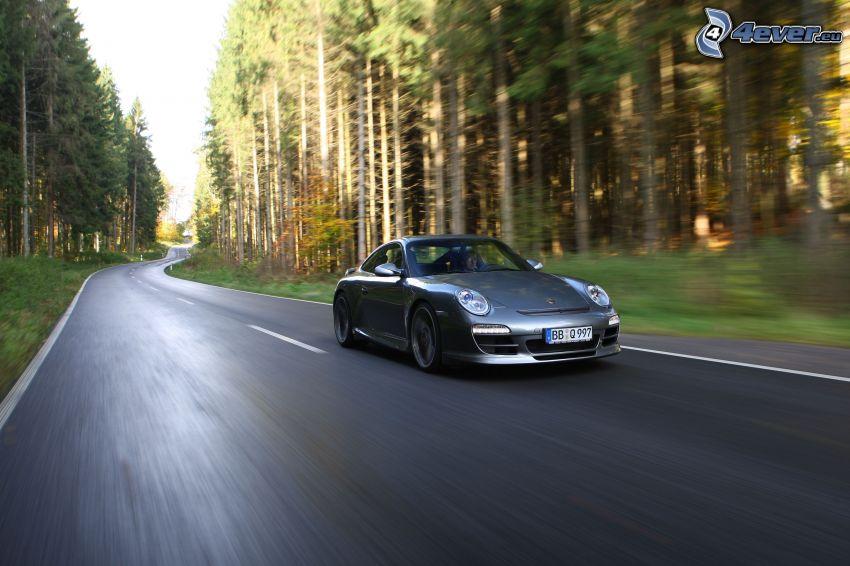 Porsche 911, Geschwindigkeit, Pfad durch den Wald