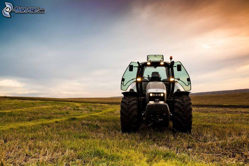 Traktor, Wiese
