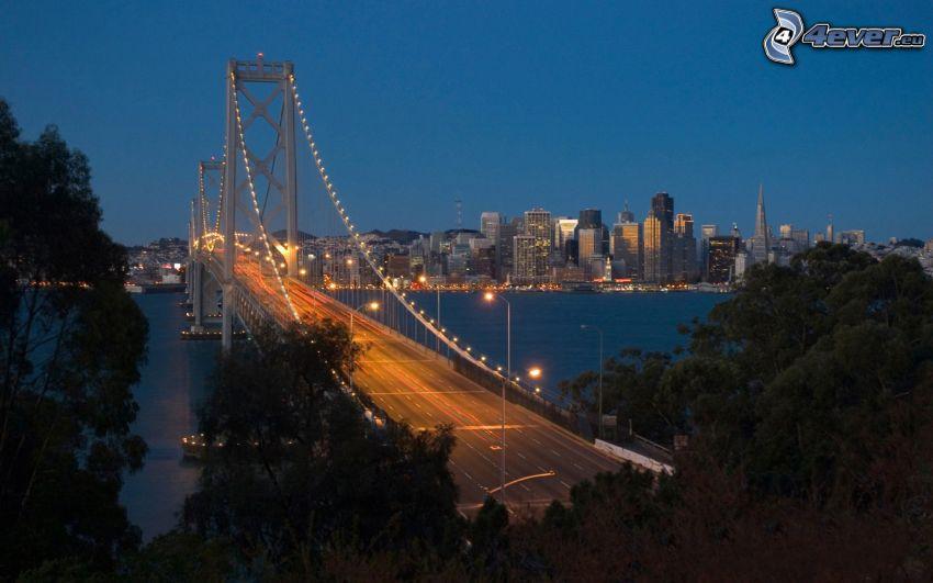 Bay Bridge, San Francisco, USA, Abend, beleuchtete Brücke, Bäume