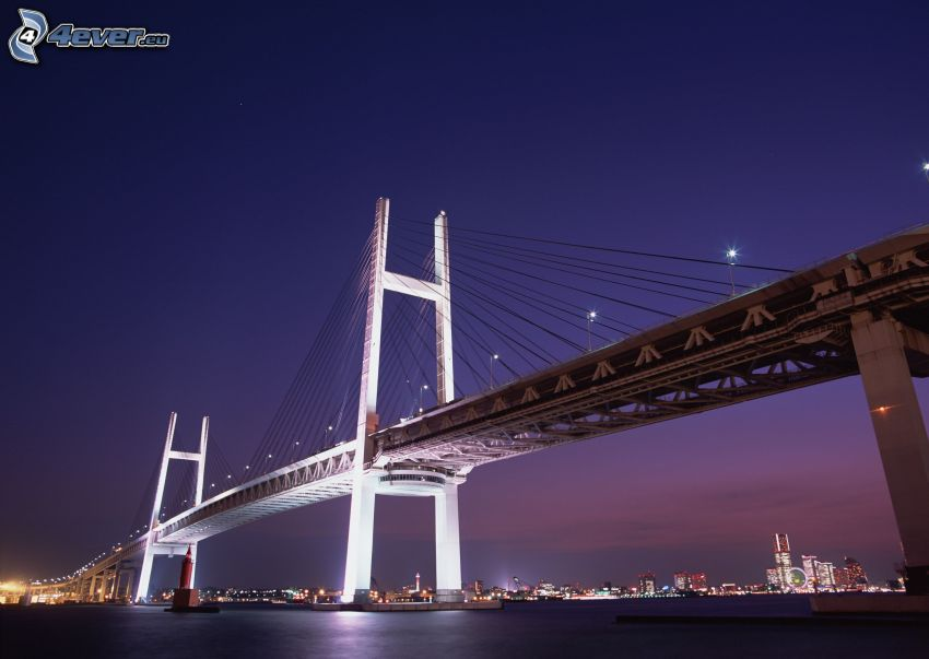 beleuchtete Brücke, Shanghai