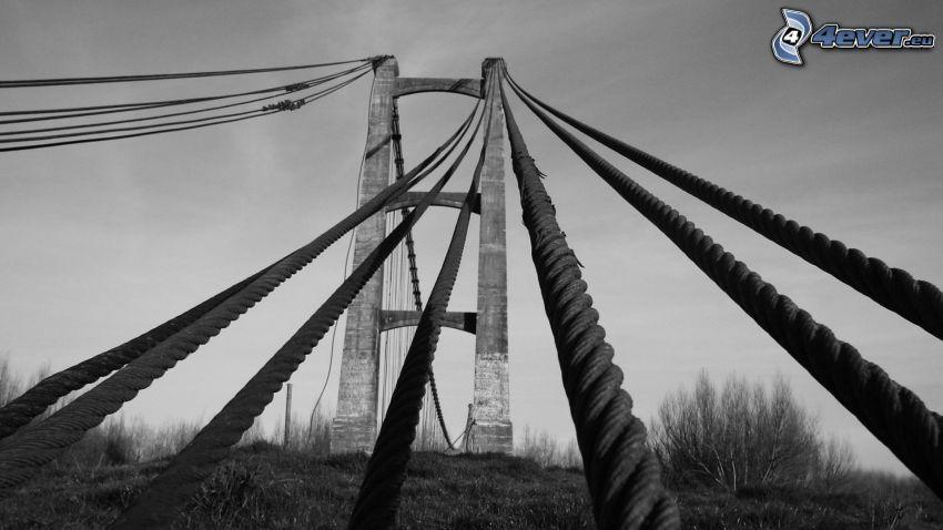 Brücke, Tauwerk