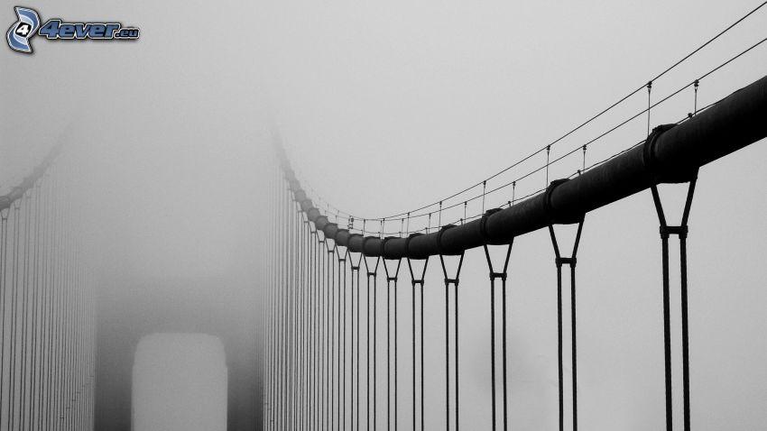 Golden Gate, Brücke im Nebel