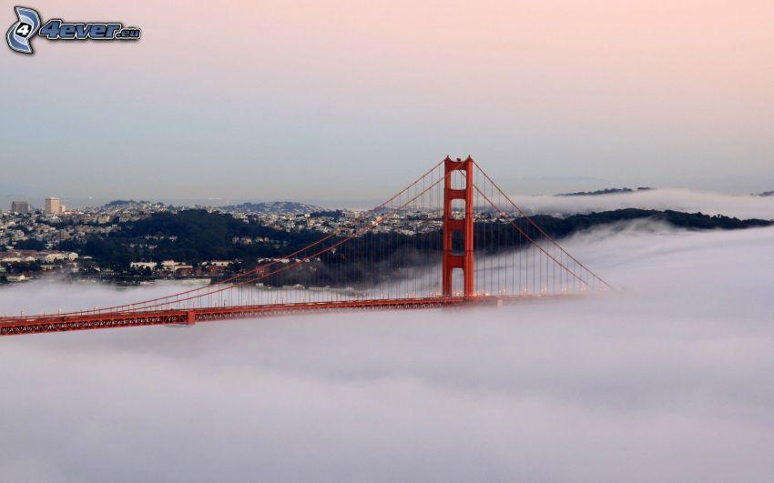 Golden Gate, nebel über dem Meer