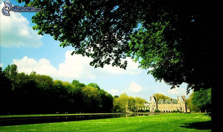 Chateau, Fluss, Bäume