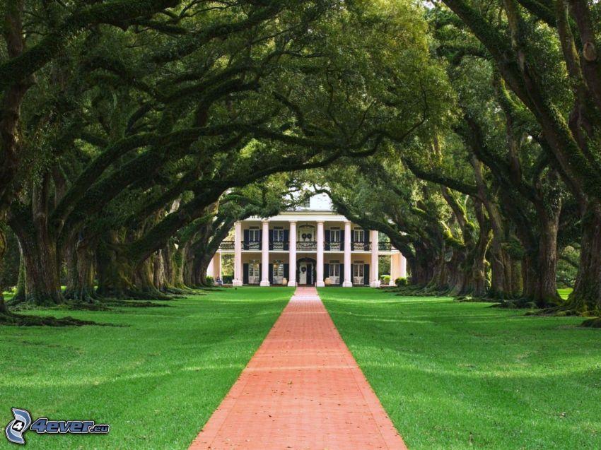 Gehweg, Haus, Bäume, Gras