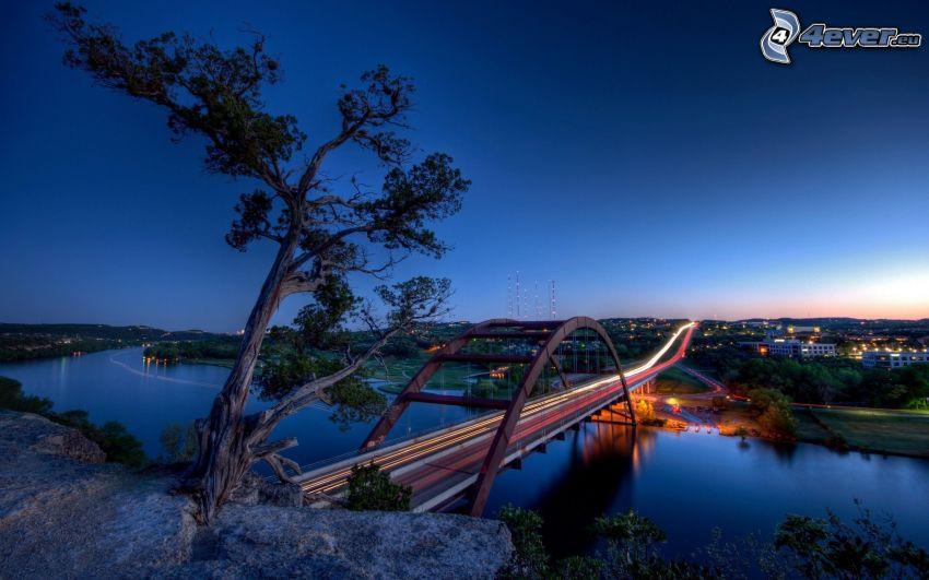 Brücke, Lichter, Fluss, Abend, Baum auf dem Felsen