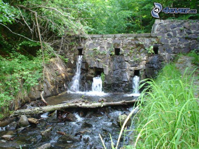 Damm, Bach, Natur, Wasser