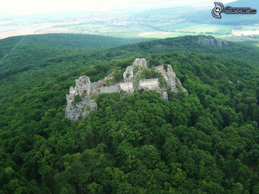 Gýmeš Schloss, Ruine, Wald, Fliegersicht