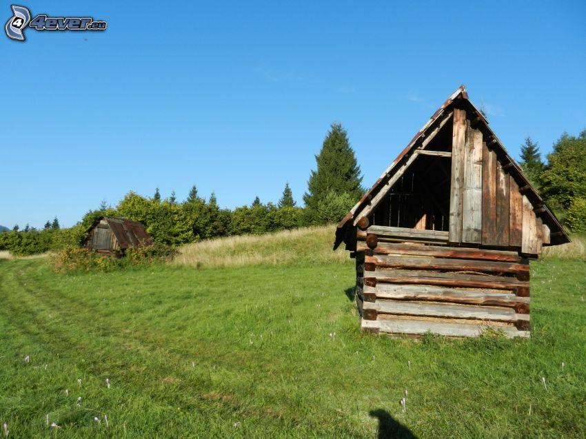 Heuboden, Wiese, Himmel, Hütte, Gras