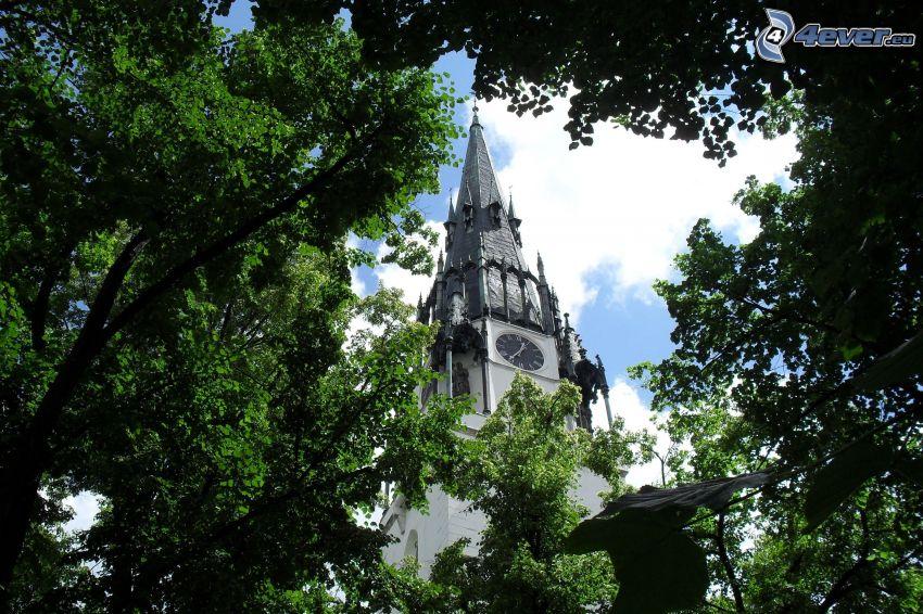 Kirchturm, Park, Bäume
