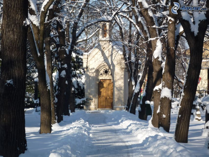 schneebedeckte Kapelle, Baumreihe, Allee, verschneite Bäume