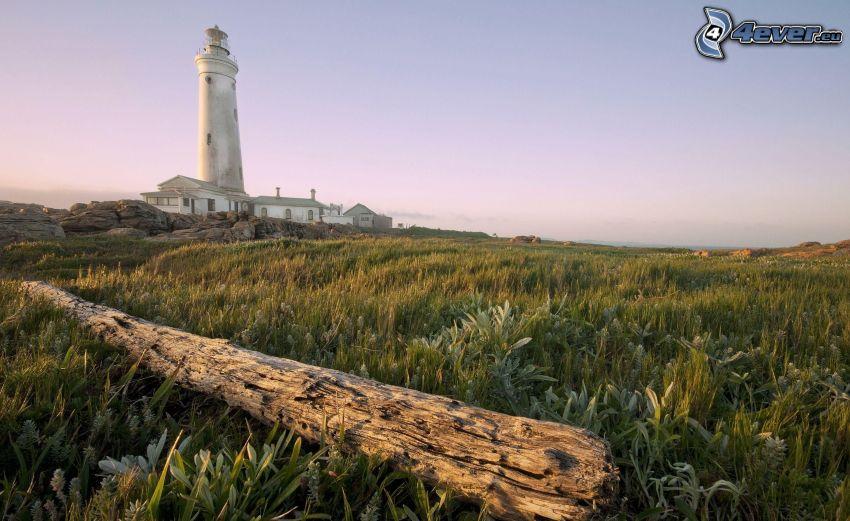 Leuchtturm, Holz, Gras
