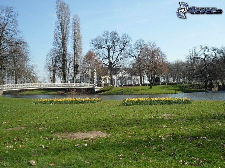Cortewalle, Belgien, Park, Fußgängerbrücke, Fluss