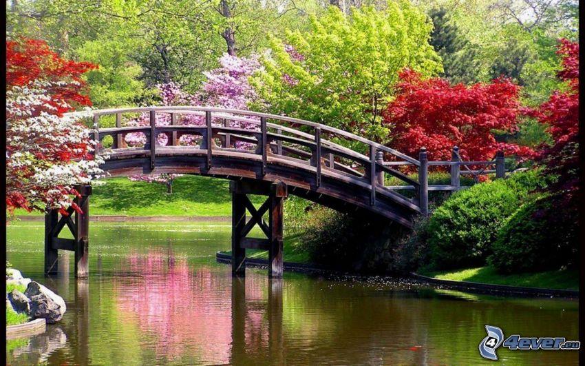 Holzbrücke, Park, See, bunte Bäume