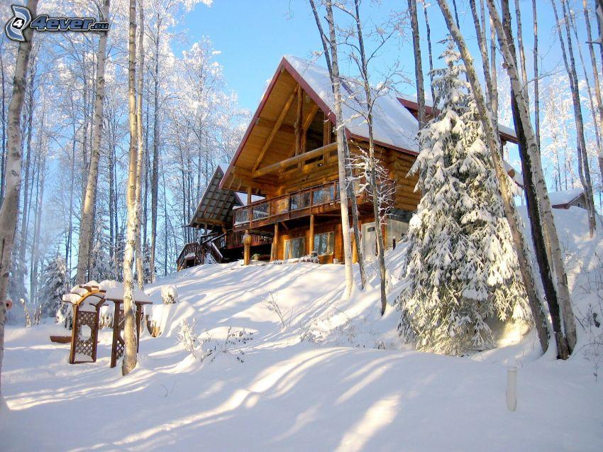 schneebedeckte Hütte, verschneite Bäume