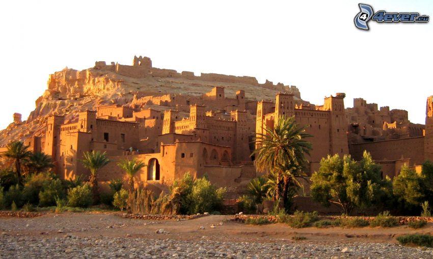 Ait Benhaddou, Palmen