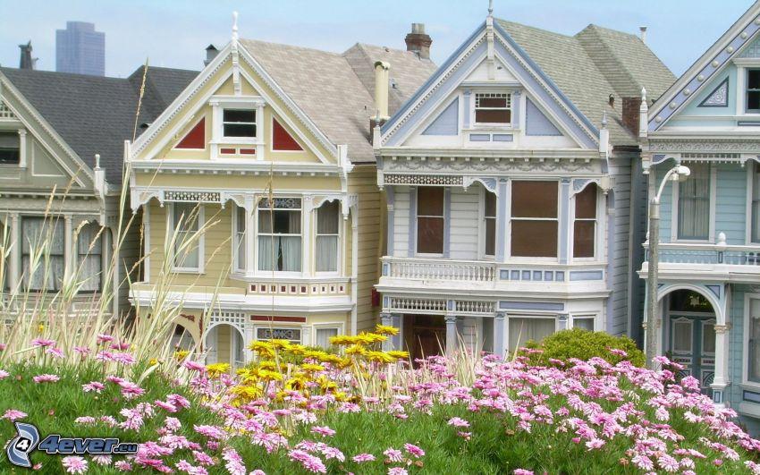 San Francisco, reihe Häuser, rosa Blumen, gelbe Blumen