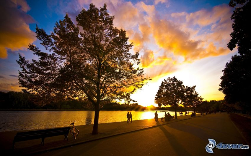 Ufer, Sonnenuntergang über dem Fluss, Bäume, Himmel