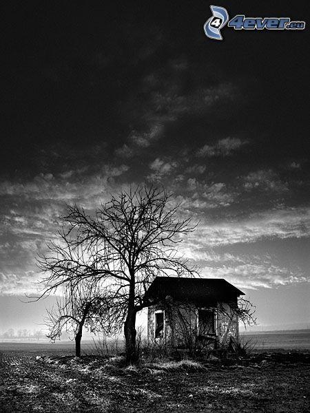 verlassenen Haus, trockenen Baum, Schuppen, schwarzweiß