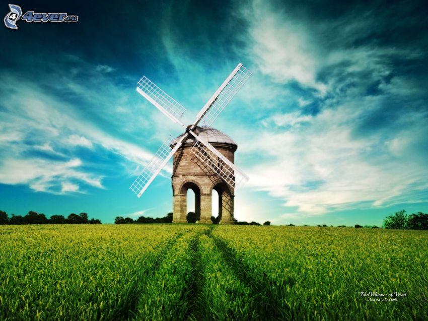 Windmühle, Himmel, Feld