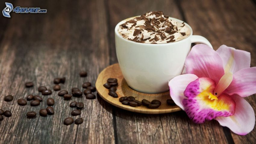 Cappuccino, Schaum, Kaffeebohnen, Orchidee