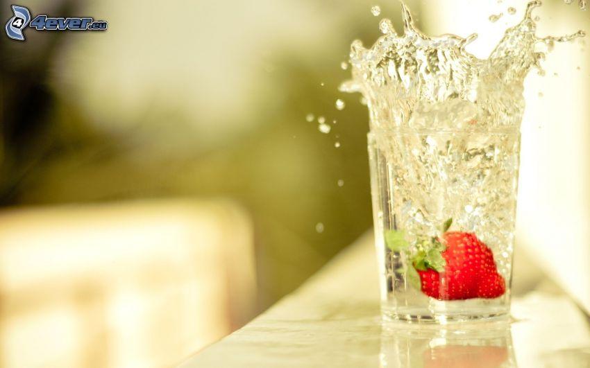 Erdbeere, splash