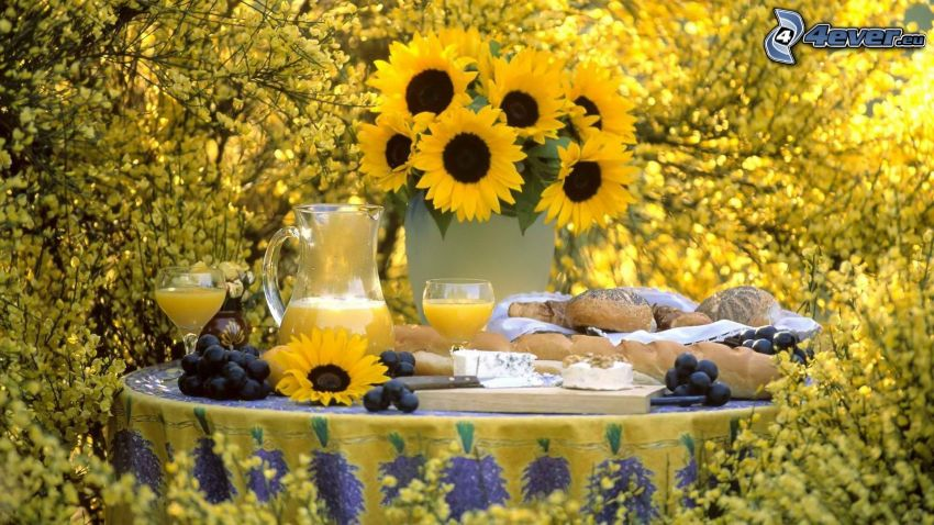 Frühstück, Sonnenblumen, frischer Fruchtsaft
