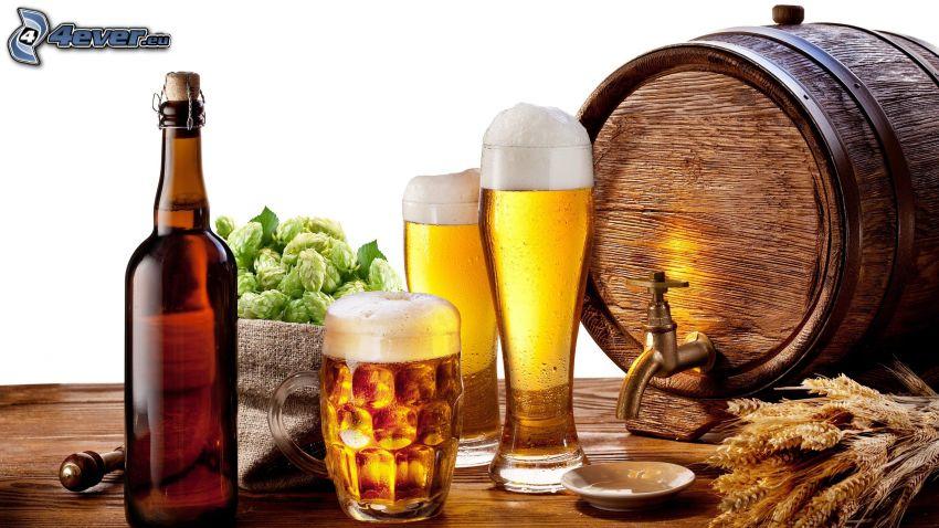 Gläser des Bieres, Fass