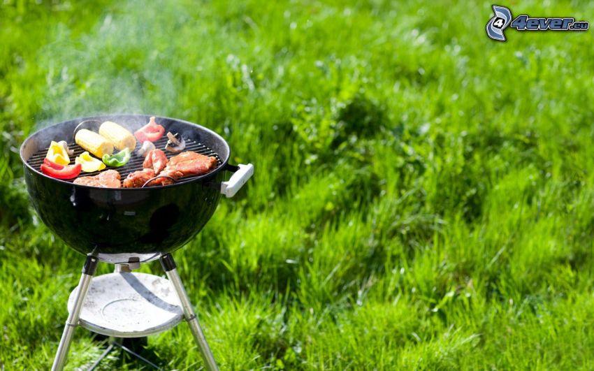 grill, Spieß gegrillt, Gras