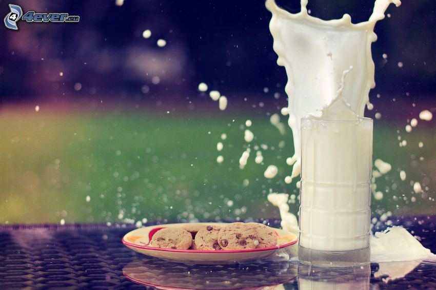 Milch, splash, cookies