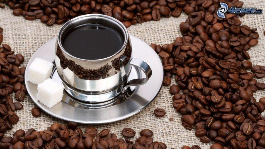 Tasse Kaffee, Kaffeebohnen