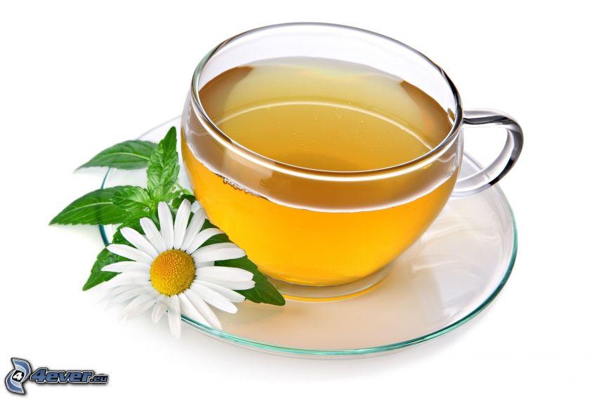 Tee-Tasse, Gänseblume